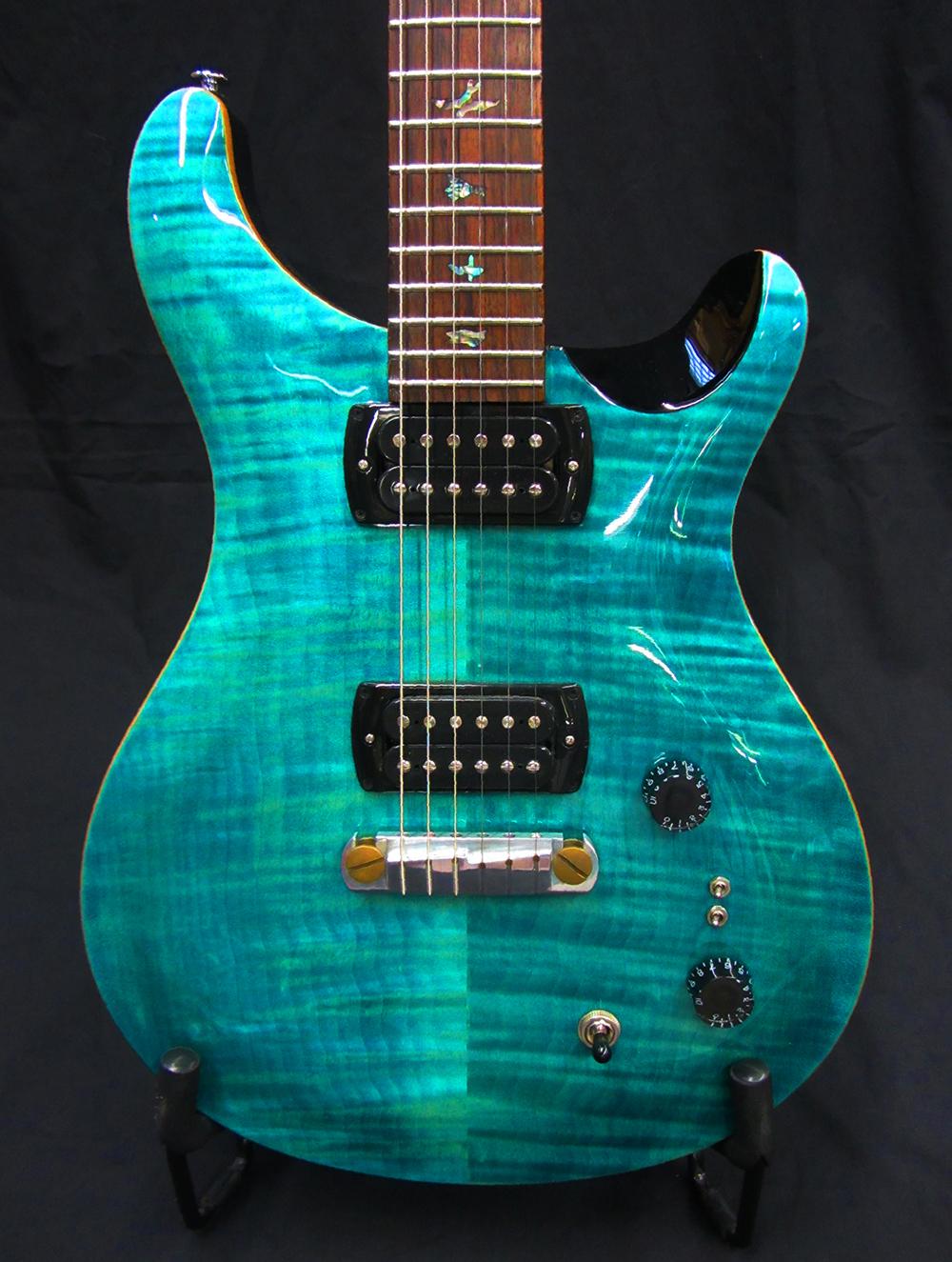 PRS SE: Paul's Guitar